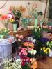 Blumenmarkt-5.jpg