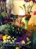 Blumenmarkt-8.jpg