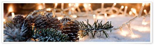 Tannenzapfen und Tannengrün mit LED-Lichtern im Schnee