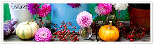 Blumenstrauß mit Dalien und Kürbis