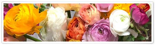 © Der Blumenmarkt