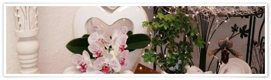 (c) Blumenmarkt